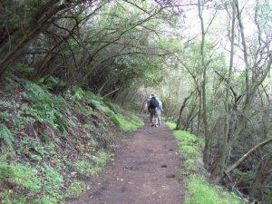 Backbone Trail Part 4:    Encinal Canyon Road Trailhead to Latigo Canyon Road Trailhead Shuttle