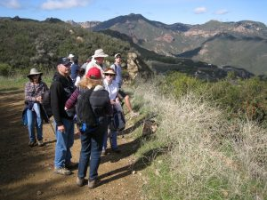 Backbone Trail Part 3:    Backbone Trailhead (across from Mishe Mokwa Trailhead) to Encinal Canyon Road Trailhead Shuttle