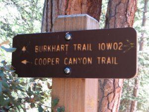 Cloudburst Summit to Buckhorn Campground via Cooper Canyon
