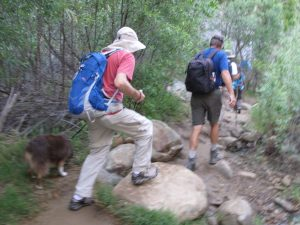 Towsley Canyon Loop -