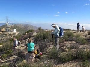 Oak Flat Trail to Whitaker Peak