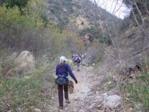 Devil Canyon